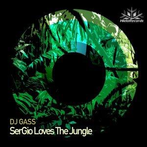 DJ Gass 歌手頭像