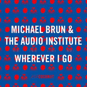 Michael Brun & The Audio Institute 歌手頭像