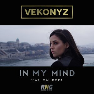 Vekonyz 歌手頭像