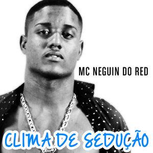 Mc Neguin do Red 歌手頭像