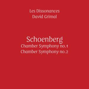 Les Dissonances, David Grimal 歌手頭像