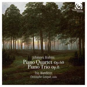 Trio Wanderer, Christophe Gaugué