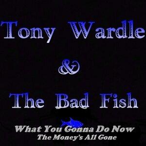 Tony Wardle & the Bad Fish 歌手頭像