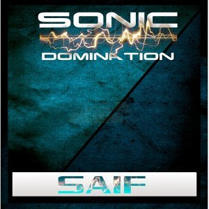 Sonic Domination 歌手頭像