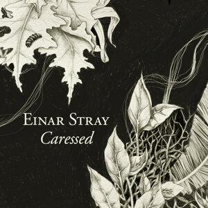 Einar Stray 歌手頭像
