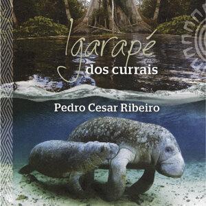 Pedro Cesar Ribeiro 歌手頭像