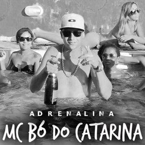 Mc Bó do Catarina