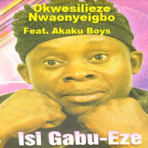 Okwesilieze Nwaonyeigbo 歌手頭像