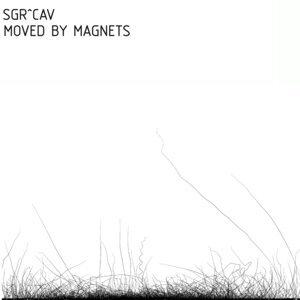 SGR^CAV (SØS Gunver Ryberg and Cristian Vogel) 歌手頭像