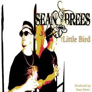 Sean Brees 歌手頭像