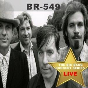 BR549 歌手頭像