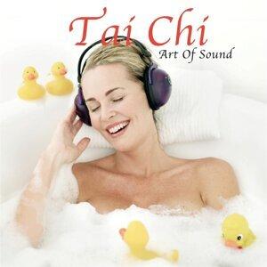 Art of Sound 歌手頭像