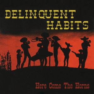 Delinquent Habits 歌手頭像