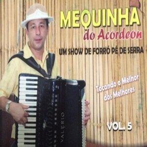 Mequinha do Acordeon 歌手頭像