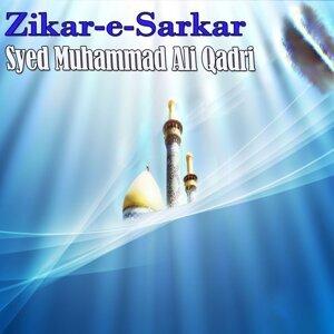 Syed Muhammad Ali Qadri 歌手頭像