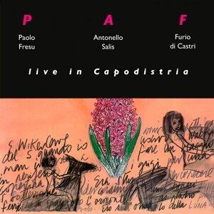 Paf (Paolo Fresu, Antonello Salis, Furio di Castri) 歌手頭像