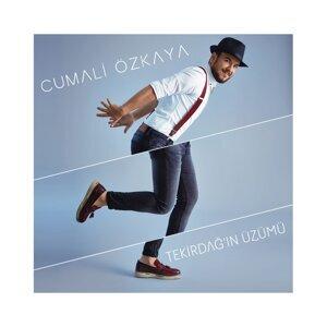 Cumali Özkaya 歌手頭像