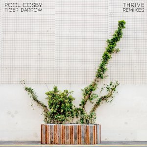 Pool Cosby 歌手頭像