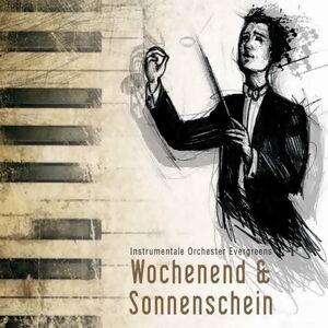 Wochenend und Sonnenschein - instrumentale Orchester Evergreens 歌手頭像
