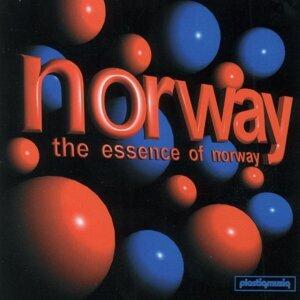 Norway 歌手頭像