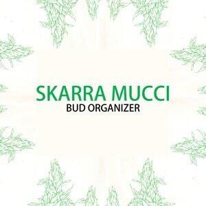 Skarra Mucci 歌手頭像