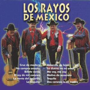 Los Rayos De Mexico 歌手頭像