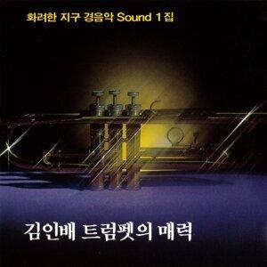 Kim Inbae 歌手頭像