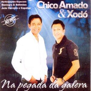 Chico Amado & Xodó 歌手頭像