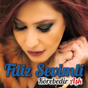 Filiz Sevimli 歌手頭像