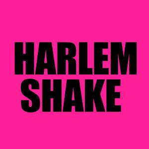 Harlem DJs 歌手頭像