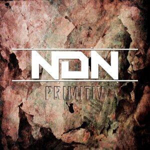 NDN 歌手頭像