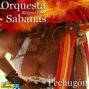 Orquesta Ritmo de Sabanas 歌手頭像
