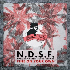 N.D.S.F. 歌手頭像