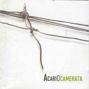 Acariocamerata 歌手頭像