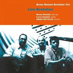 Bruno Romani Evolution Trio 歌手頭像