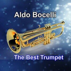 Aldo Bocelli 歌手頭像