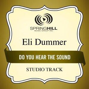 Eli Dummer 歌手頭像