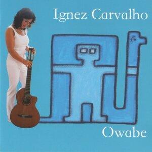Ignaz Carvalho 歌手頭像