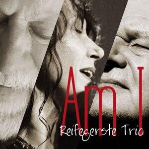 Reifegerste Trio 歌手頭像