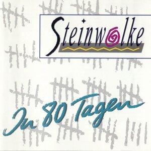 Steinwolke 歌手頭像