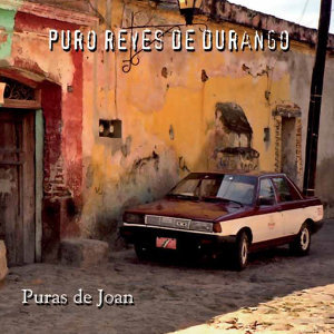Puro Reyes de Durango 歌手頭像