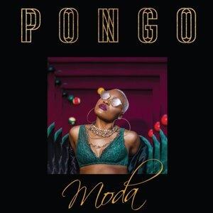 Pongo 歌手頭像