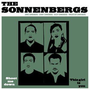 The Sonnenbergs 歌手頭像