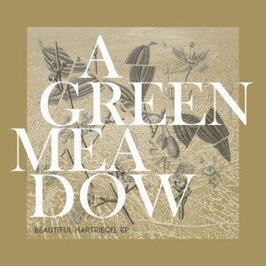 A Green Meadow