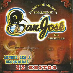 Banda San Jose De Mesillas 歌手頭像