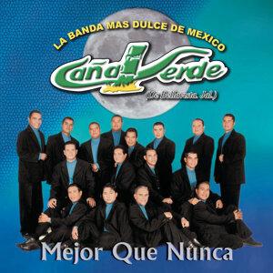 Banda Caña Verde 歌手頭像