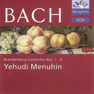 Bath Festival Orchestra/Yehudi Menuhin 歌手頭像