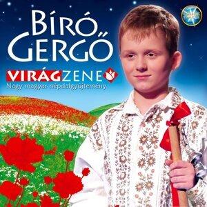 Bíró Gergo 歌手頭像