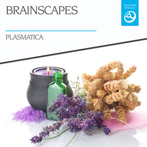 Brainscapes