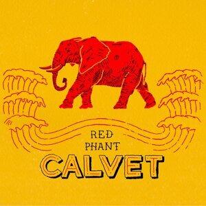 Calvet 歌手頭像
